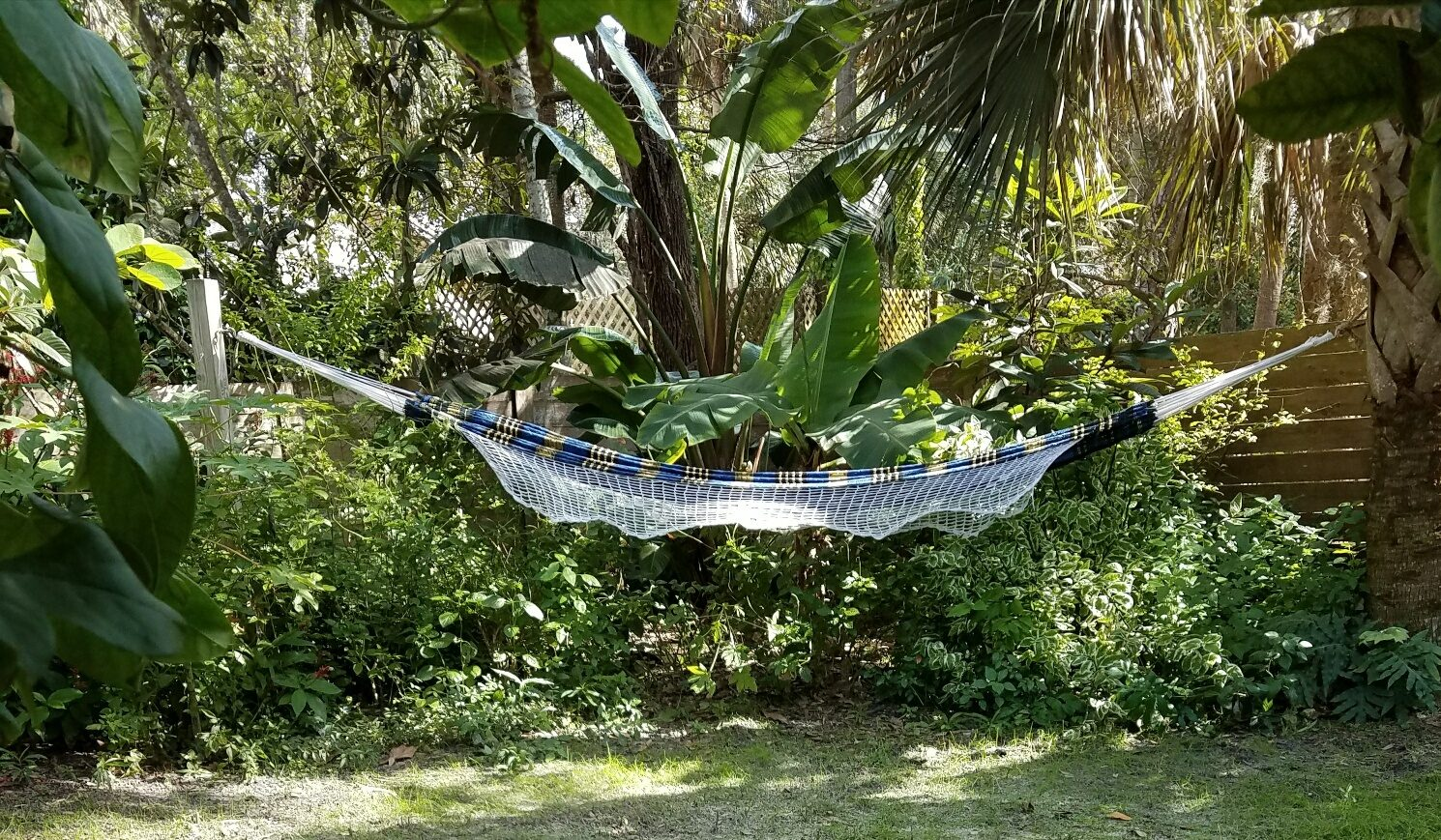 Another Day In The Hammock